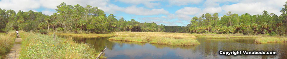 bulow creek state park in ormond beach picture